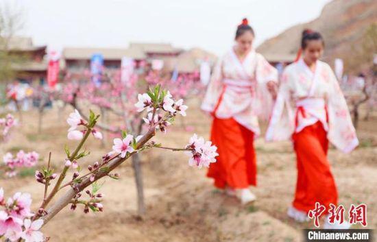 图为兰州市安宁区仁寿山景区内桃花盛开枝头。 高展 摄