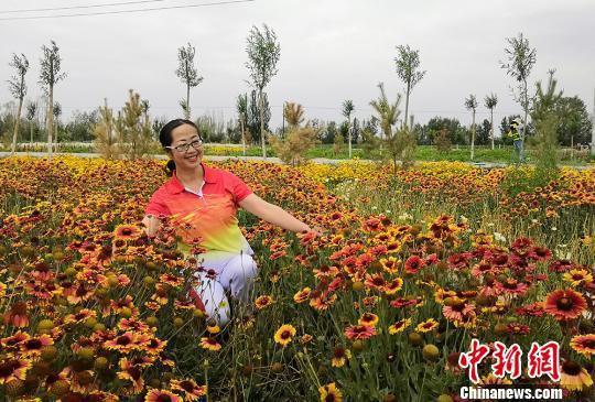位于甘肃武威的普康田园综合体内百花竞相绽放,引来游人驻足拍照。 闫姣 摄