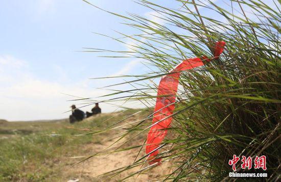 残留在路边的山地越野赛路线标示。 高展 摄