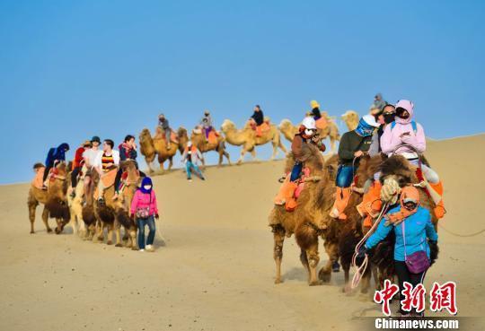 图为大批游客骑骆驼体验敦煌大漠风光。 王斌银 /摄