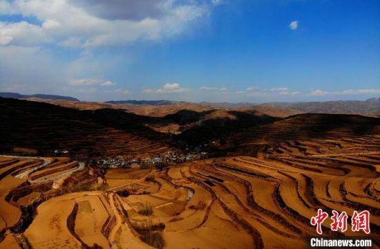 图为甘肃宕昌县庞家乡拉路梁优质中药材种植基地。 李亚龙 摄