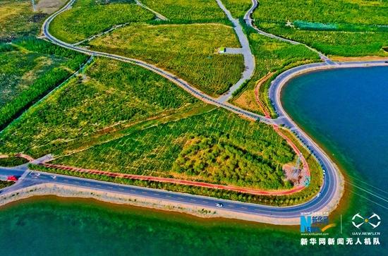 空中俯瞰甘肃省张掖市甘州区滨河新区城市森林公园。新华网发 (王将 摄)
