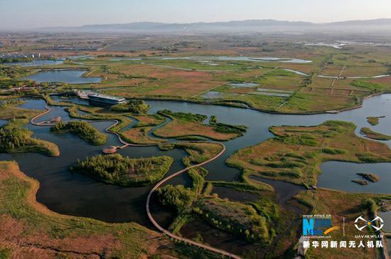 空中俯瞰甘肃省张掖国家湿地公园。新华网发(杨永伟 摄)