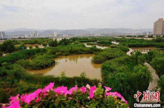 图为黄河兰州段夏季景色。(资料图) 杨艳敏 摄