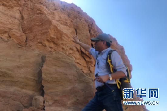 邓涛在临夏巨犀化石产出位置向记者介绍相关情况。新华社记者 张文静 摄