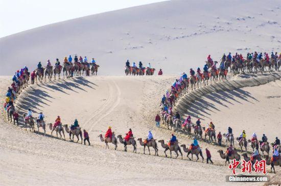 图为长长的驼队宛如长龙游走大漠深处。 王斌银 摄
