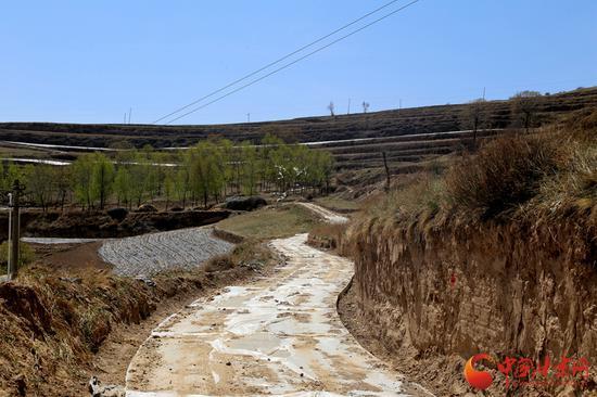 庙咀村的通社道路
