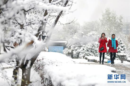 11月5日,市民冒雪在崆峒区南山生态公园游玩。 新华社发(杨昕 摄)