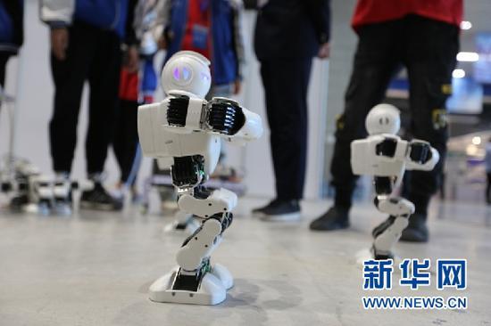 机器人模型展示。新华网发(刘欣瑜 摄)