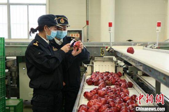图为兰州海关工作人员监管出口水果。(资料图)兰州海关供图