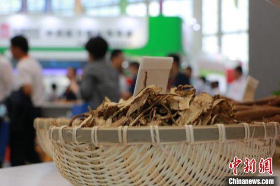 """2020年8月,第三届中国(甘肃)中医药产业博览会在""""千年药乡""""甘肃省定西市陇西县召开。图为线下展馆的药材展示。"""