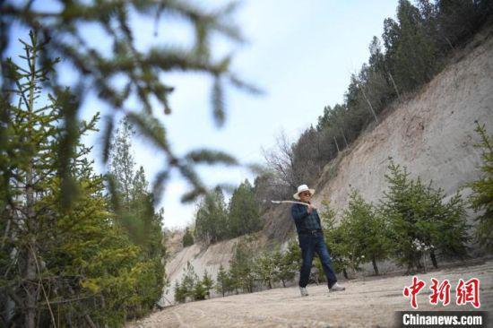 4月下旬,植树20多年的老人汤学进坚持多年来的习惯,肩扛铁锨巡山,每天至少走3万步数。 杨艳敏 摄
