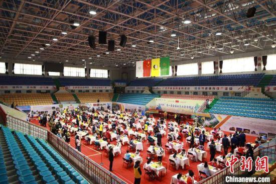 """5月20日,""""崆峒杯""""第一届全国女子业余围棋公开赛在平凉市开幕。 赵勇 摄"""