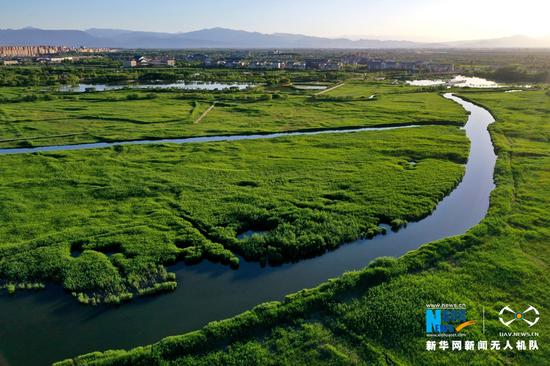 张掖国家湿地公园内的溪流。新华网发 (吴学珍 摄)
