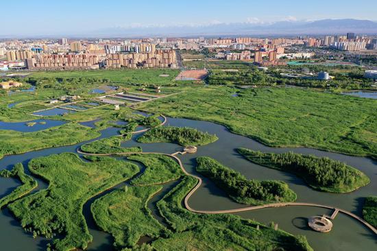 这是近日航拍的张掖国家湿地公园。新华网发 (吴学珍 摄)