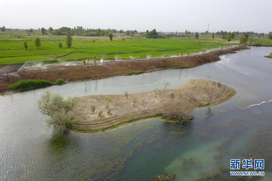 这是6月10日在临泽县拍摄的水系连通项目中打通的九眼泉河水系(无人机照片)。新华社记者 范培珅 摄