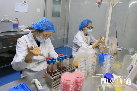 科研人员进行检测实验。高展 摄