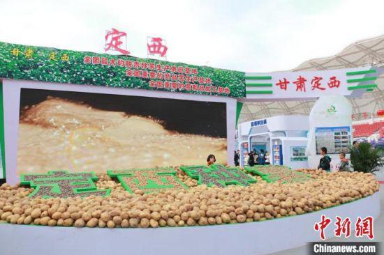 2020年定西市马铃薯产业产值达202亿元。(资料图) 张婧 摄