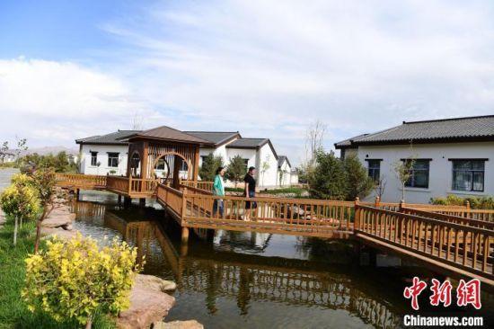 图为张掖市甘州区打造生态农业通道带动乡村游。 杨艳敏 摄