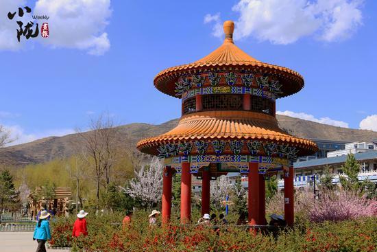 游客在公园的凉亭下观赏盛开的各种花卉。