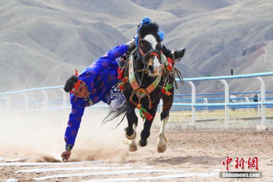 骑手展示赛马技艺。武雪峰 摄
