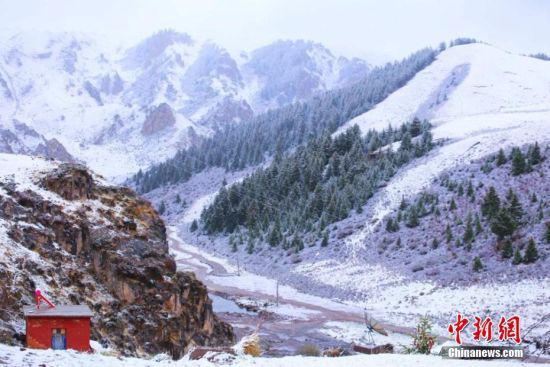 5月18日,地处甘肃省河西走廊中段的张掖山丹马场迎来降雪天气。王超 摄