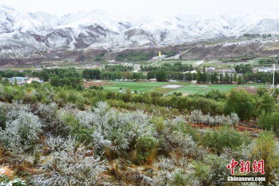 图为雪后的山川草原一片银装素裹。 武雪峰 摄