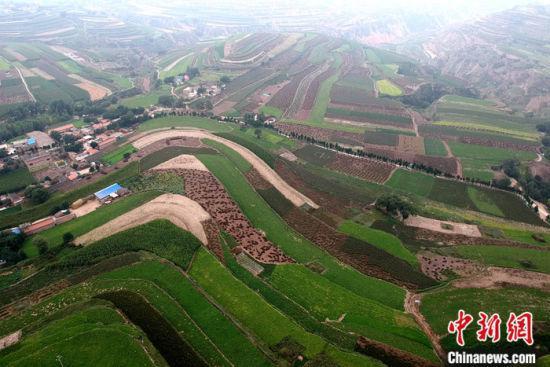 9月12日,航拍甘肃省陇西县柯寨镇中药材绿色标准化种植基地。