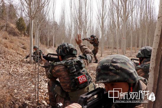 特战队员协同搜索山林地域。