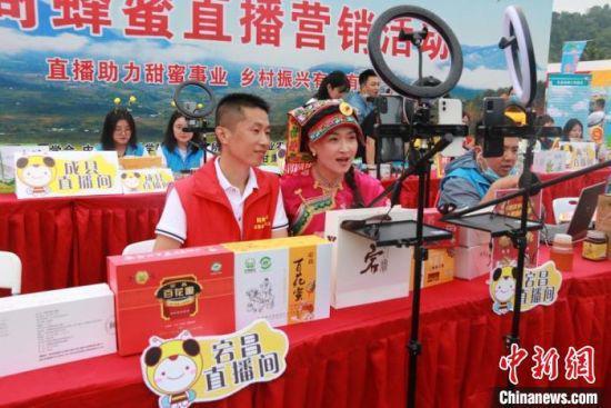 6月25日至27日,第六届全国中蜂产业发展大会暨蜂产品博览会在甘肃陇南市两当县举办。 陇南市委宣传部供图