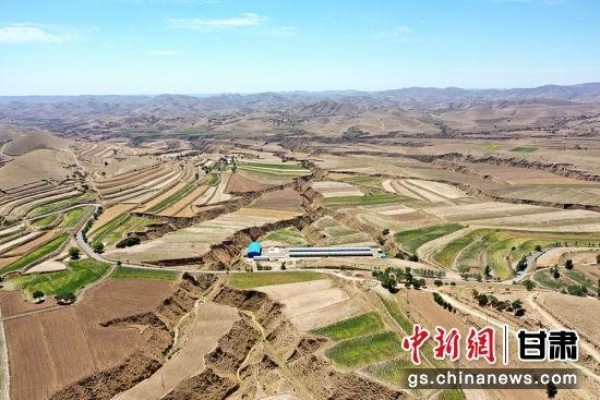 图为甜水镇干旱的农田。 李文 摄