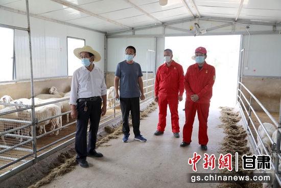 采油二厂在环县驻村干部主动协调对接,共同开展抗旱保羊增收。
