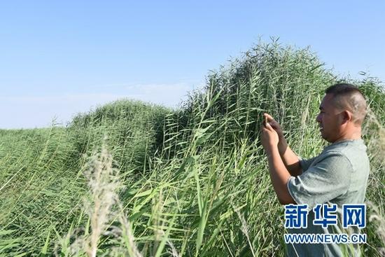 8月12日,魏智华在巡查中进行记录。(新华社记者 崔翰超 摄)
