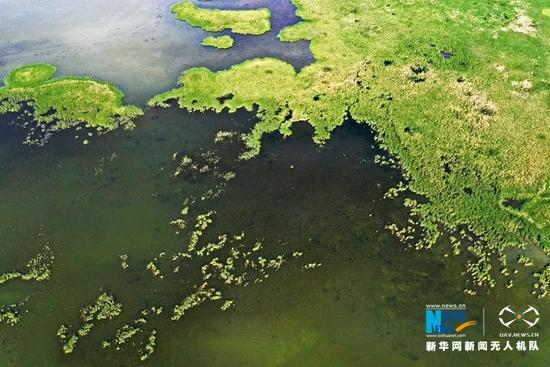这是近日航拍的甘肃省张掖黑河湿地国家级自然保护区高台县明塘湖湿地。新华网发 (郑耀德 摄)