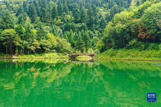 这是8月26日拍摄的官鹅沟国家森林公园内的泽荡湖(无人机照片)。新华社记者 郎兵兵 摄