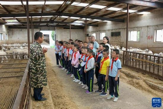 9月2日,肉羊养殖场的技术人员带领渭州学校的学生们参观羊舍并进行讲解。新华社发(王紫轩 摄)