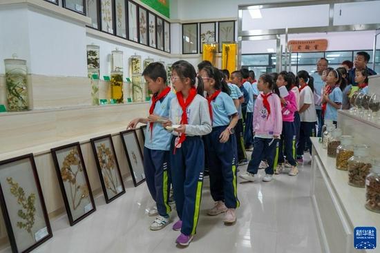 9月2日,在甘肃省定西市陇西县的陇西药圃园,渭州学校的学生参观中草药标本室。新华社记者 郎兵兵 摄