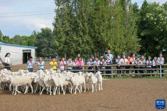 9月2日,渭州学校的学生们参观当地一处肉羊养殖场。新华社发(王紫轩 摄)