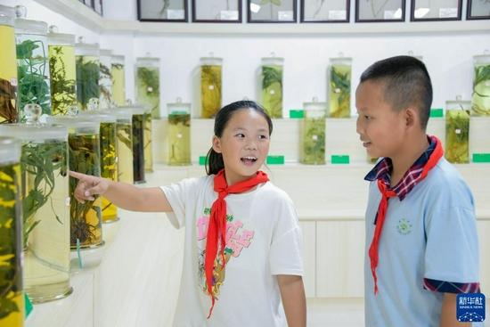 9月2日,在甘肃省定西市陇西县的陇西药圃园,渭州学校的两名学生在中草药标本室里讨论。新华社发(王紫轩 摄)