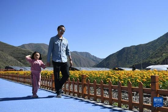 游客在甘肃甘南卓尼县木耳镇力赛村的花海游览(9月11日摄)。新华社记者 陈斌 摄