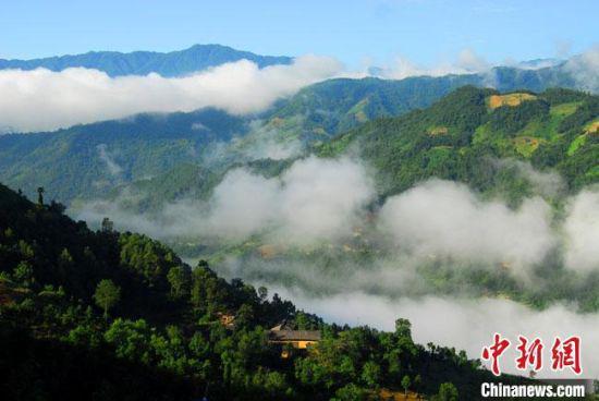 图为陇南市康县铜钱镇低垭子村风光。(资料图) 谈龙 摄