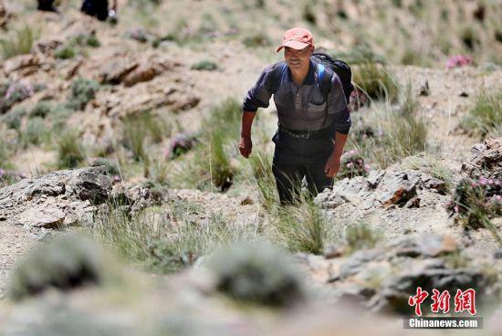 忙完农活后,朱克铭去山上的羊圈,这条路也是当时救援队攀爬上山的路线。 高展 摄