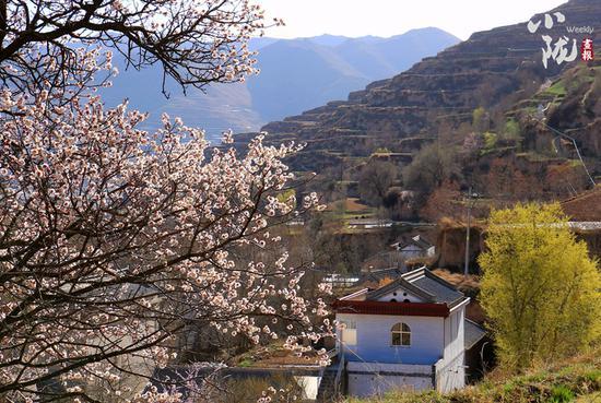 坐落在山林间的小村,与自然相伴,安静祥和,远离城市的喧扰。