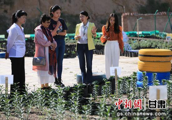 图为华文媒体代表们参观百合园。
