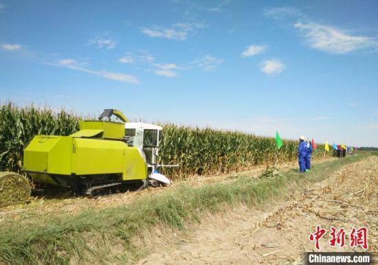 图为饲草收获装备在田间作业。(资料图)