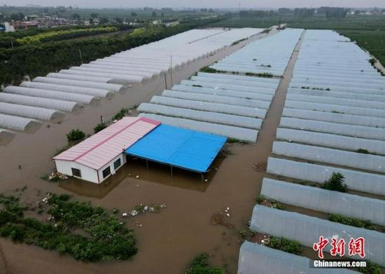 资料图:7月22日,安阳市西于曹村附近被淹的大棚。中新社记者 邹浩 摄
