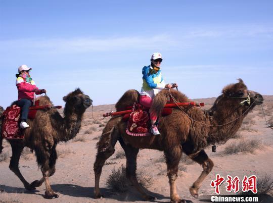 """阿克塞国家沙漠公园是世界上离城市最近的沙漠,具有典型的雅丹地貌、格状沙丘、月形沙丘、蜂窝状沙丘、金字塔形沙丘、星状沙丘和线状沙丘等沙丘类型外,还分布着世界上独一无二的""""羽毛状沙丘""""。 高宏善 摄"""