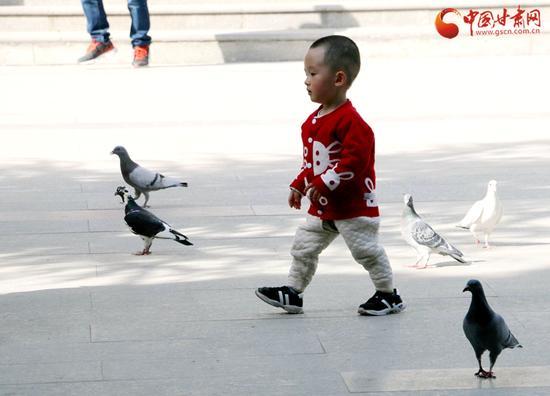 亲近自然,亲近生命,在这个春天里与鸽子来一次亲切地接触。