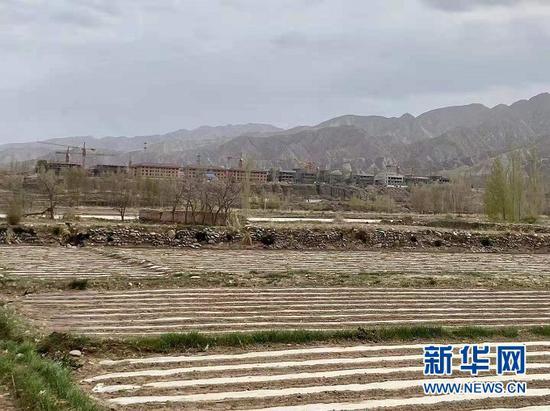 站在梨园村玉米制种田里,可以清楚看见丹霞景区和正在开发的旅游项目。新华社记者 王朋 摄