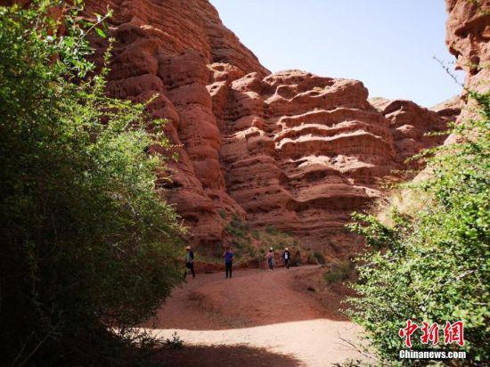 峡谷以流水沟壑为基本特征,山势低且平缓,以沙石山为背景,主要以红白和赭红色为主色调,色彩略显灰暗,多呈圆锥或柱状,造型奇特。吴学珍 摄